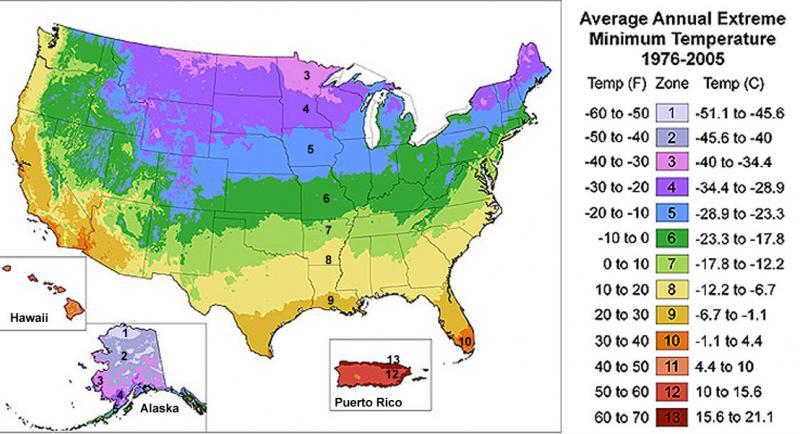 USDA Hardiness Map of the United States