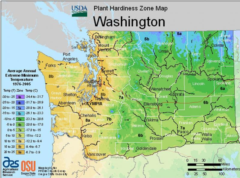 USDA Hardiness Map for Washington