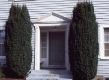 plant habit, residential landscape